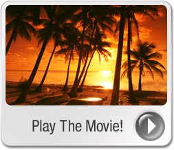 Travel business movie